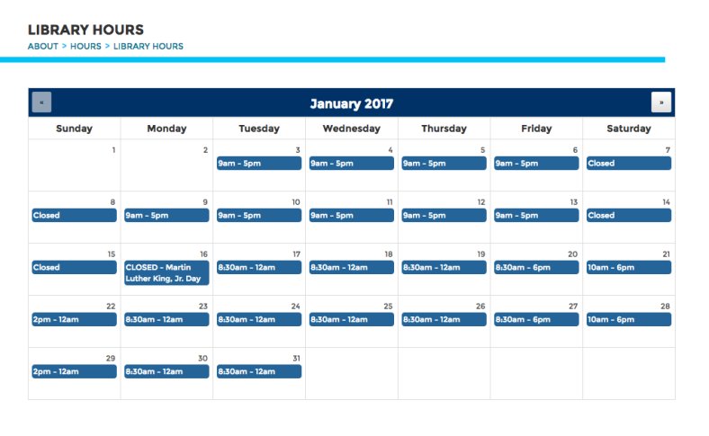 January Calendar View